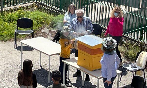 L'indispensabile attività delle api per l'ambiente, Lezione interattiva al plesso di Simeri Crichi