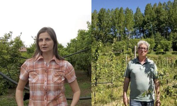 """""""Agricoltura è"""", Inizia il viaggio-confronto tra le aziende agricole calabresi"""