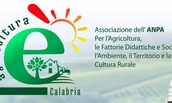 """Cala il sipario sul progetto di """"Agricoltura è"""". Grande soddisfazione tra i partecipanti"""