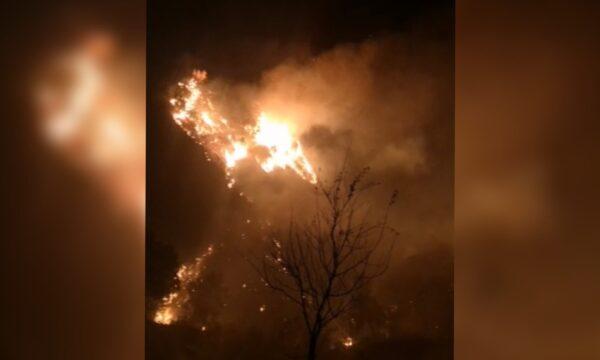 Simeri Crichi avvolta nelle fiamme, 5 incendi ieri nel territorio – VIDEO